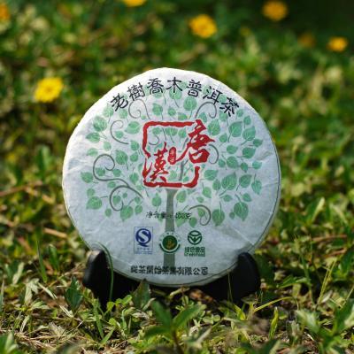 【平西唐汉】漭水古树生茶 400g